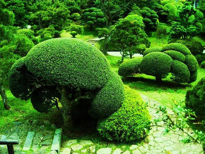 Hakone Garden.