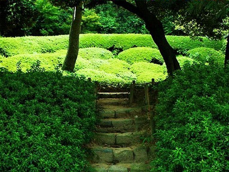 Ritsurin Koen Garden.